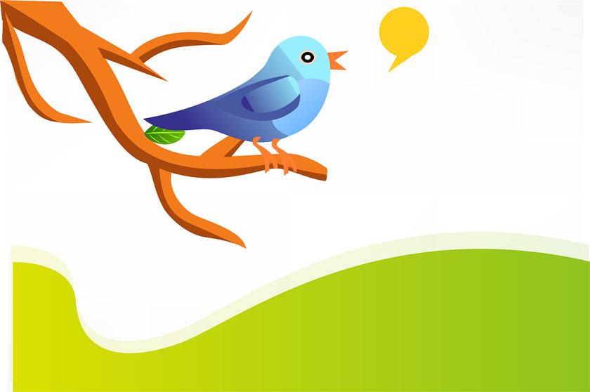Erfolg bei Twitter